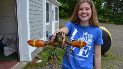 Abby and the lobster