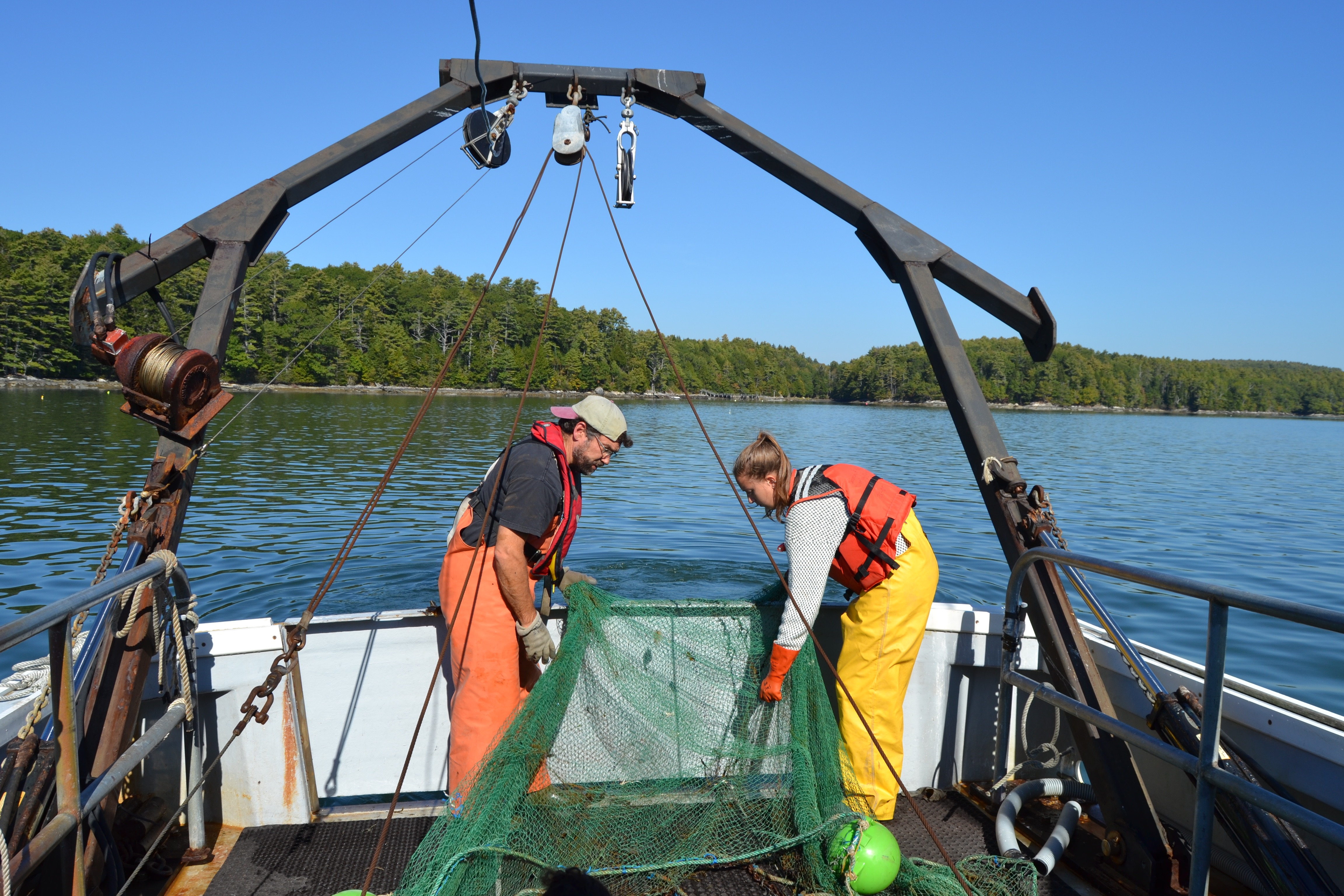 picture of faculty and student setting otter trawl