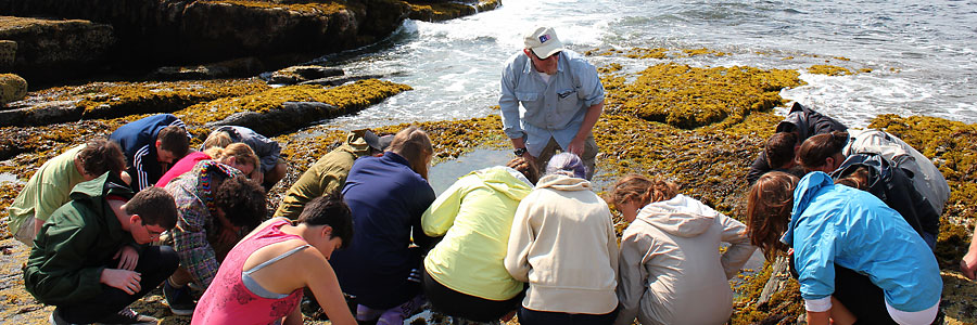 picture of marine ecology students