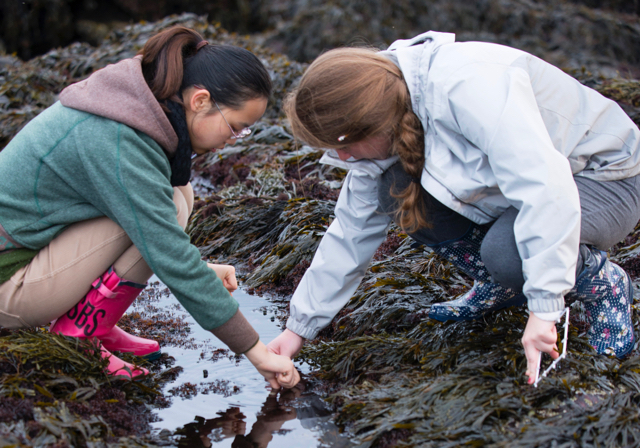 picture of students at a tidepool