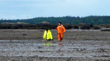 students on the mud flat