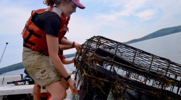 SEANET intern on the Damariscotta River