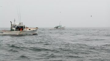 picture of lobster boats