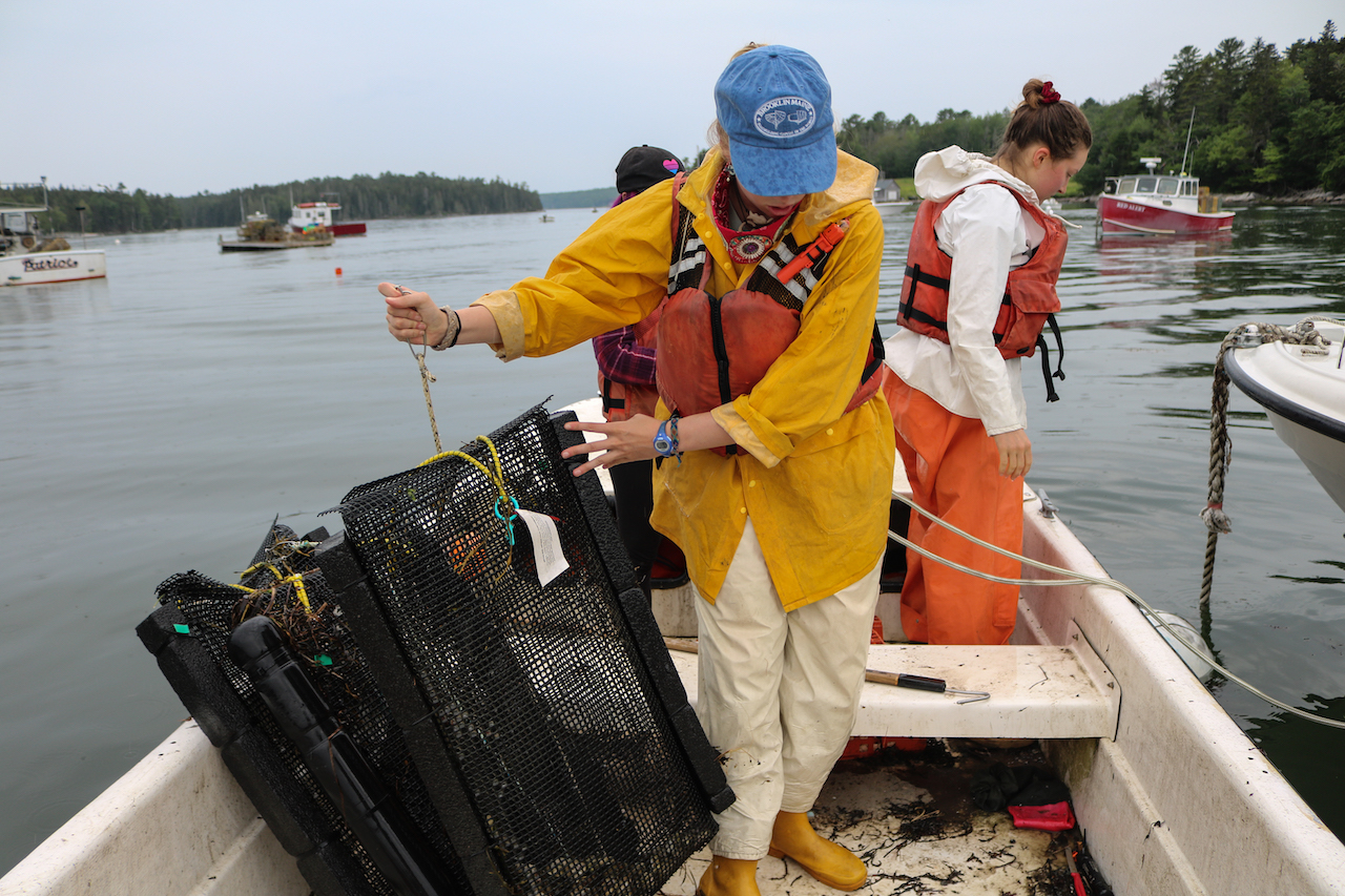 Damian Brady and Chris Davis will talk about challenges and opportunities for aquaculture in Maine, at the Darling Marine Center at 10:30 a.m. Aug. 9